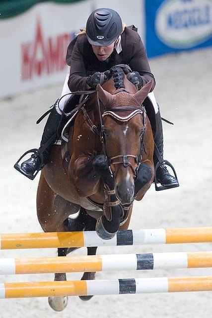 Hoorn Angelique (NED) mit Blauwendraad's O'Brien