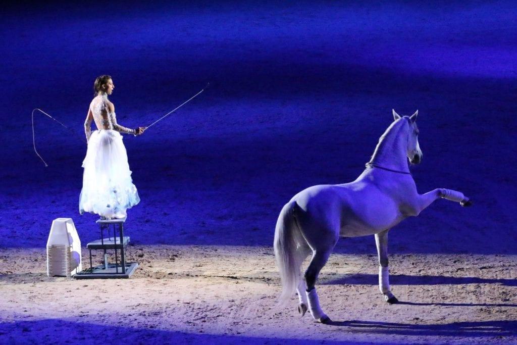 Mit ihren bezaubernden Auftritten begeistert Alizée Froment Pferdefans auf der ganzen Welt. © Alizée Froment
