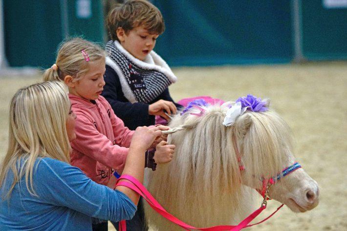 Am Donnerstag, den 07.12. gibt es freien Eintritt für Schulklassen und Kindergartengruppen im Rahmen des pferdestarken Schul- und Kindergartentages bei der Amadeus Horse Indoors. © Salzburg Cityguide