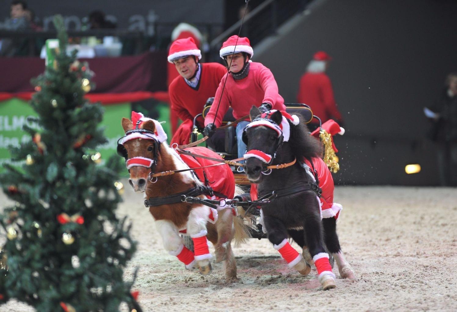 Wie ihr zu günstigen Karten für die Amadeus Horse Indoors 2017 kommt, gibt's hier nachzulesen. © Fotoagentur Dil
