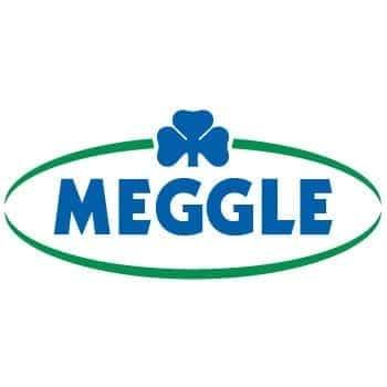 Logo Meggle