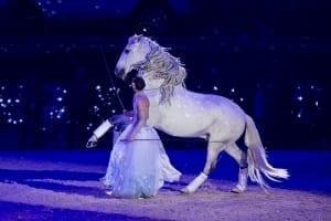 Alizee Froment bei der Show der Amadeus Horse Indoors. © Michael Graf