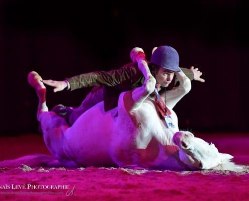 Showtime! Showstars wie Laurent Galinier und die Mica Dogs kommen. © Anais Levé Photographie
