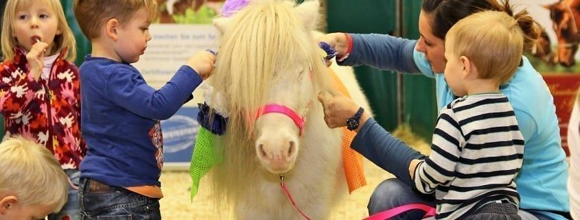 """Der Verein """"Pferde für unsere Kinder"""" und die Amadeus Horse Indoors machen gemeinsame Sache. © salzburg-cityguide.at"""