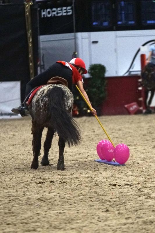 Rasante Ponyspiele von Freitag bis Sonntag in der Colloseum Arena in der Messehalle. © salzburg-cityguide.at