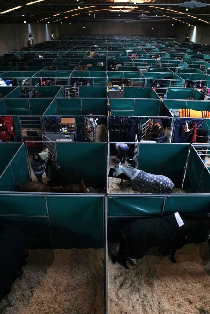 800 Pferde beziehen in der kommenden Woche ihre Boxen bei der Amadeus Horse Indoors von 5.bis 8. Dezember 2019 im Messezentrum Salzburg. © salzburg-cityguide.at
